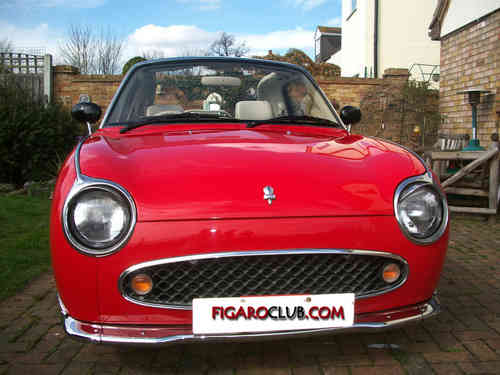 Nissan Figaro Bumpers