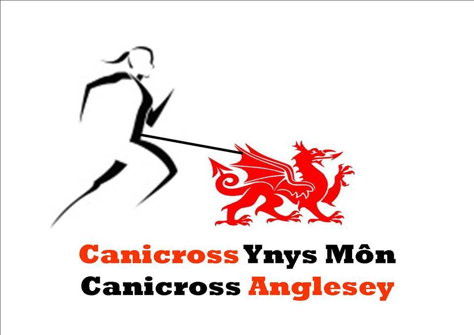 anglesey_logo