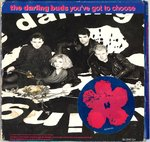 "DARLING BUDS, THE - You've Got To Choose 7"" BOXSET (VG/EX) (M)"