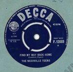 "NASHVILLE TEENS, THE - Find My Way Back Home 7"" (-/VG) (M)"