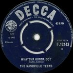 "NASHVILLE TEENS, THE - Whatcha Gonna Do? 7"" (-/VG) (M)"