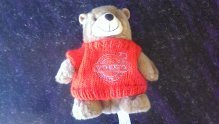 SMALL RED EMBROIDERED VOC TEDDY