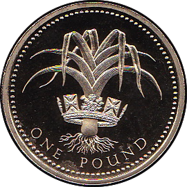 1990 ONE POUND PROOF £1 WELSH LEEK