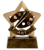 Art Star Award