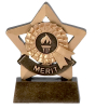 Merit Star Award