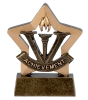 Achievement Star Award